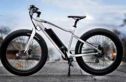 Ecolocycle Fat Bike